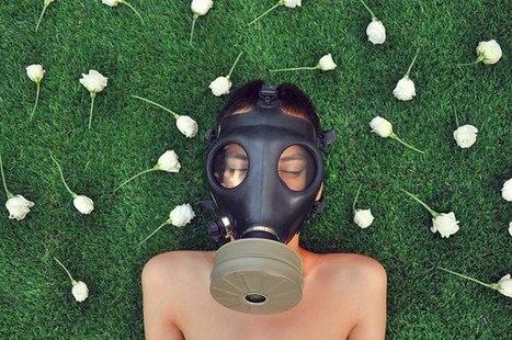Pesticides : L'AIR de rien... | Abeilles, intoxications et informations | Scoop.it