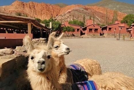 Argentina: Turismo Sustentable en Purmamarca | Turismo Sustentable | Scoop.it