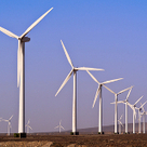 Wind and Wildlife Hand in Hand   The Energy Collective   Comparing Energy Sources   Scoop.it