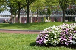Scott's Lawn Service provide lawn service in Lilburn, GA! | Scott's Lawn Service | Scoop.it