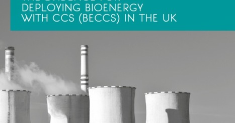 The evidence for deploying bioenergy with CCS (BECCS) in the UK | The ETI | Energies vertes et autres | Scoop.it