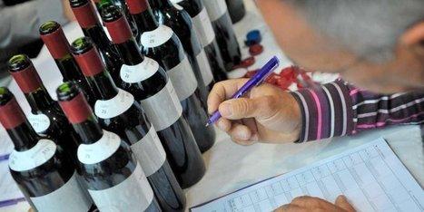 Le palmarès complet du Concours des vins d'Aquitaine 2014   Oenodidacte   Scoop.it