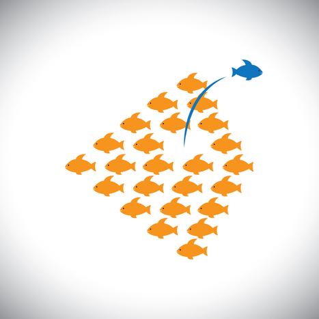 Los 12 Síntomas del Camino al Éxito | Empresa 3.0 | Scoop.it