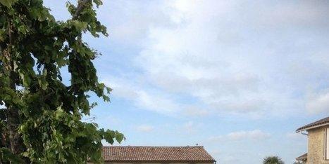 Sauternes fête le vin prend de l'ampleur - Sud Ouest | Oeno-digital | Scoop.it