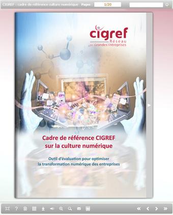 CIGREF dote la Culture Numérique d'entreprise d'un cadre de ... | open source | Scoop.it