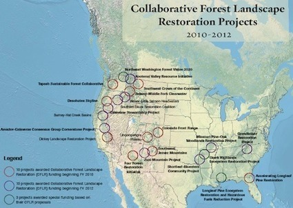 America's Forest: Now with 20% More Love | Cool Green Science: The Conservation Blog of The Nature Conservancy | Sustainable Futures | Scoop.it