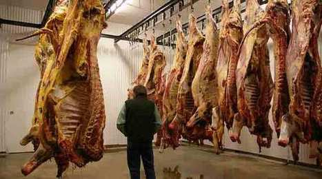Les grands abattoirs européens en difficulté - Agro Media | Actualité de l'Industrie Agroalimentaire | agro-media.fr | Scoop.it