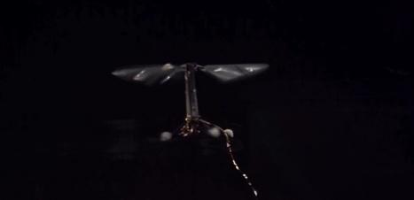Robobee, le robot qui se déplace aussi bien dans l'air que dans l'eau - Sciencesetavenir.fr | Robolution Capital | Scoop.it