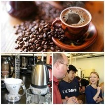 Coffee, Academically — and announcing the Stanford University Coffee Symposium | Coffee News | Scoop.it