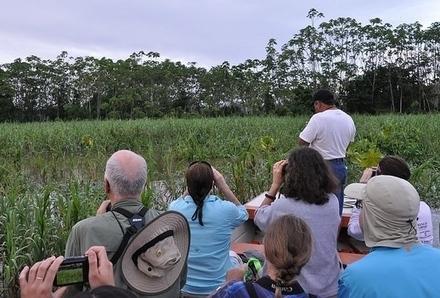 BirdSleuth Teachers Take on the Amazon Rainforest | Rainforest EXPLORER:  News & Notes | Scoop.it