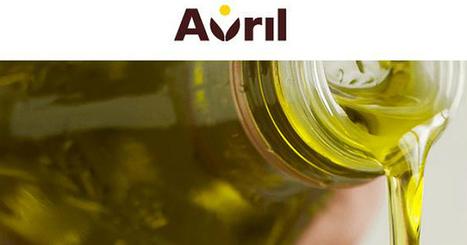 Avril contraint d'adapter son activité de production de biodiesel en France | Production porcine | Scoop.it