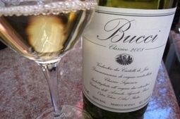 Villa Bucci, a timeless classic of Italian wine… | Wines and People | Scoop.it