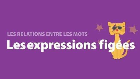 Les relations entre les mots | Le francais anim... | Utiliser les TIC en classe de FLE | Scoop.it