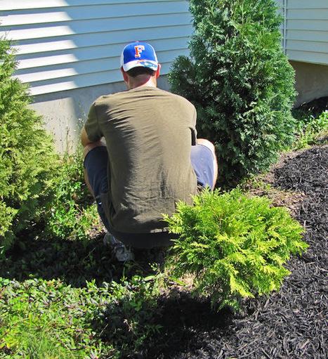 "An Obsessive Neurotic Gardener: The ""art"" of weeding | Annie Haven | Haven Brand | Scoop.it"