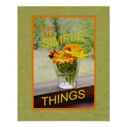 Daisies In Glass Photograph Orange Border Poster | Z Photography | Scoop.it