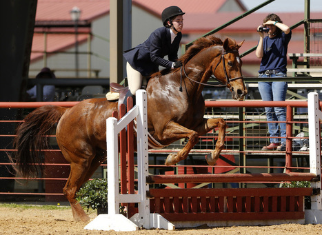 After 30 years as a Las Colinas fixture, equestrian center land sold for housing community | Lots and Land | Scoop.it