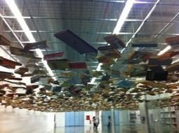 Le rôle de la bibliothèque en milieu rural : d'importance ! | Trucs de bibliothécaires | Scoop.it