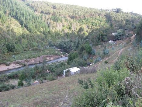 Chile / Organizaciones ciudadanas y comunidades mapuche se oponen a extracción de oro a gran escala en Carahue: Por minera La Montaña S.A.   Observatorio Ciudadano   MOVUS   Scoop.it
