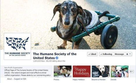 How The Humane Society Fundraises With Social Media | Social Media and Animal Shelters | Scoop.it