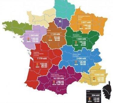 Réforme territoriale : le classement des plus grosses régions productrices de vin | Sud-Ouest intelligence économique | Scoop.it