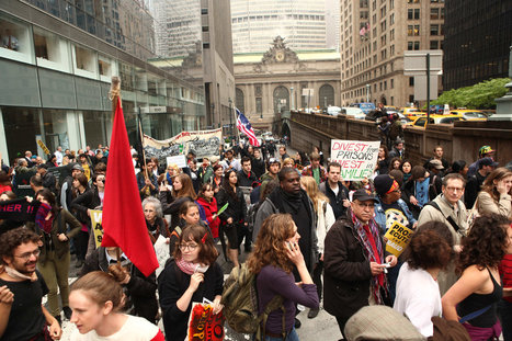 Occupy Wall Street Members' Income and Education Backgrounds ... | New Age Brains | Scoop.it