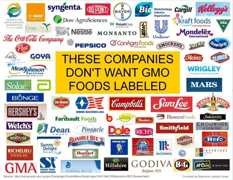 Opponents of of GM labelling triple lobbying spending in 2014 #GMO #health #liability #GMA #PepsiCO #DuPont #Cocacola | Sustainability | Scoop.it