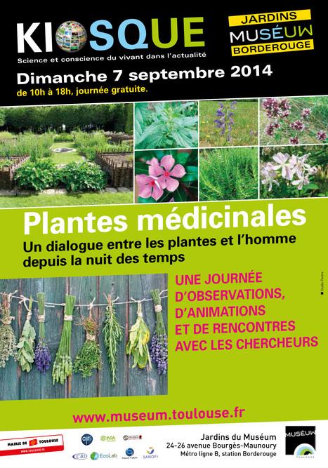 Kiosques actus- CNRS/Museum - Plantes médicinales le dimanche 7 septembre | Actualité des laboratoires du CNRS en Midi-Pyrénées | Scoop.it