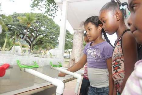 Aquaponics takes centre stage at University of West Indies' children's workshop | Aquaponics | Scoop.it