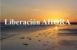 Planteando estrategias para una transformación integral de la sociedad. Charla de Félix Rodrigo Mora en Granollers | Activismo en la RED | Scoop.it
