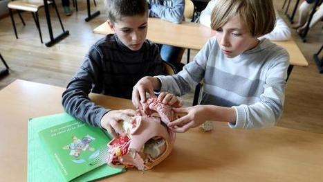 Éducation. Ils s'ouvrent au monde grâce aux neurosciences | Cerveau intelligence | Scoop.it