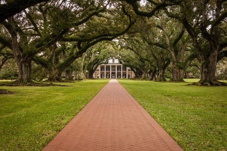 Oak Alley Plantation – Vacherie, Louisiana | David Cote Photography | Oak Alley Plantation: Things to see! | Scoop.it