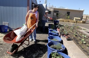 South Tucson gets center teaching healthy eating | Arizona Daily Star | CALS in the News | Scoop.it