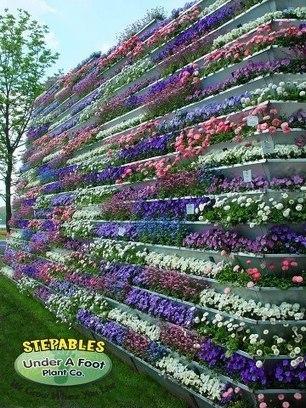 Colorful vertical...   Facebook   Wellington Aquaponics   Scoop.it