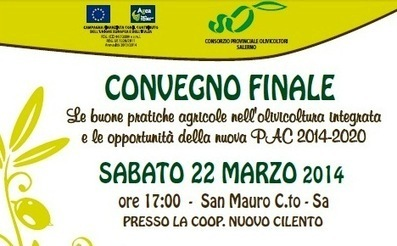'Le buone pratiche agricole nell'olivicoltura' a San Mauro Cilento - Giornale del Cilento | PrimOlio, il Blog | Scoop.it