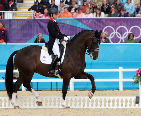 New FEI Helmet Rule To Take Effect January 1st, 2013 – by Ken Braddick | Horse and Rider Awareness | Scoop.it