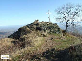 Hartmannswillerkopf (HWK) la montagne de la mort | Nos Racines | Scoop.it