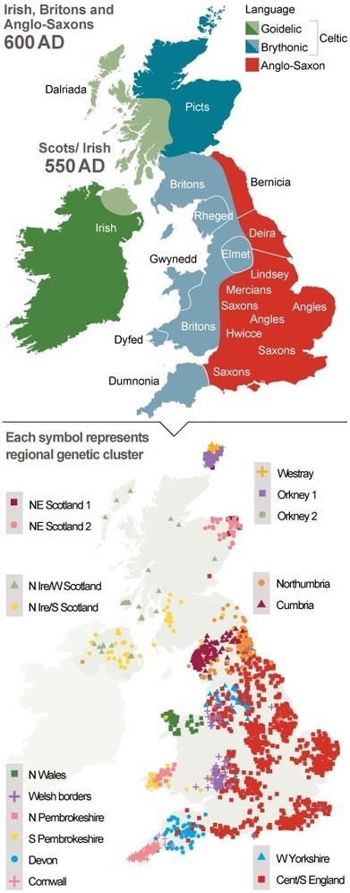 Britons still live in Anglo-Saxon tribal kingdoms, Oxford University finds | Multilíngues | Scoop.it