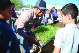 Grants let six schools grow gardens   CALS in the News   Scoop.it