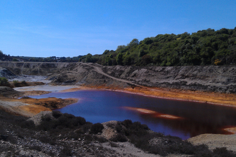 Scientists test algae to harvest precious metals and biofuel from mining sludge | Sustain Our Earth | Scoop.it