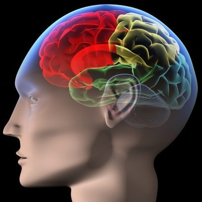 Train Your Brain This Fall with Free Online Courses, eBooks, Audio Books, Language Lessons & More | Children-Education,Safety,Food,poverty. | Scoop.it