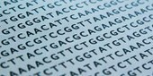 DNA-based Data Storage Here to Stay | The Scientist Magazine® | Plant health | Scoop.it