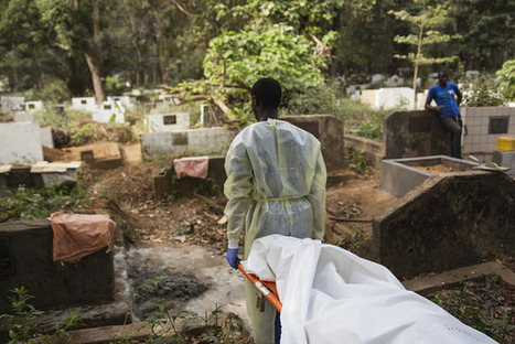 How black bin bags and common sense helped end an epidemic, and what we can learn from it | Ebola News and Views | Scoop.it