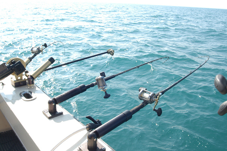 PCB levels dropping in Lake Michigan salmon - Fox11online.com | Fertility and PCBs | Scoop.it