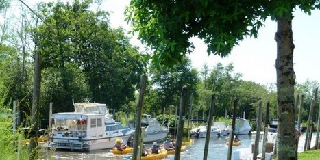 Le port en fête | Coeur du Bassin d'Arcachon | Scoop.it