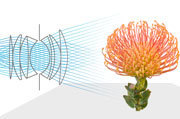 Eight Questions About Lytro's Light-Field Camera - PCWorld | Everything Photographic | Scoop.it
