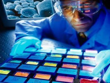 Les nanotechnologies de plus en plus présentes dans nos assiettes. | agro-media.fr | Actualité de l'Industrie Agroalimentaire | agro-media.fr | Scoop.it
