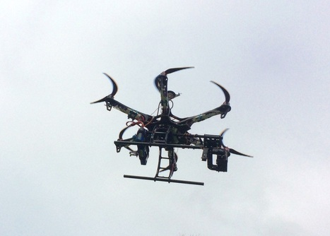 Unmanned aircraft to help study wiliwili trees - KITV Honolulu | Drones | Scoop.it