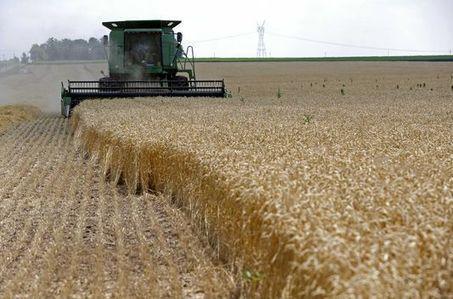 Selon Oxfam, trois banques françaises spéculent toujours «sur la faim» | CRAKKS | Scoop.it