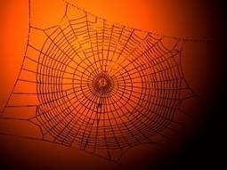 Soyons là où on ne nous attend pas - Morgane Sifantus - Mo' pour mots | Cath PêleMêle Sur la planète Web | Scoop.it
