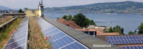 Quand la biodiversité s associe à la production d énergie | Environnement urbain | Scoop.it